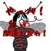 蚊が違う血液型の血を吸うとどうなるのか?固まって死ぬ?